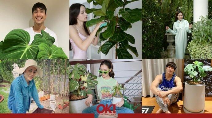 ใครๆ ก็ปลูกต้นไม้กัน! กิจกรรมสุดฮิตของคนดังที่เติมเต็มความชุมชื่นหัวใจด้วยสีเขียว